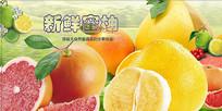 高端大气绿色新鲜蜜柚海报