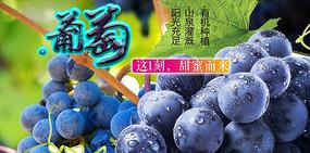 高端大气企业蓝色葡萄海报