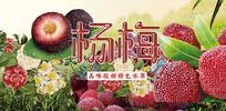高端大气水果企业红色杨梅宣传海报