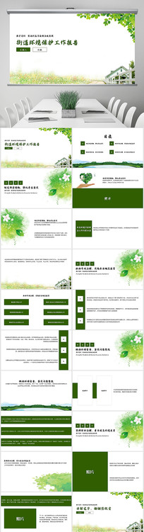 绿色街道环境保护工作报告