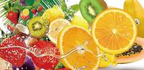 高端大气水果企业绿色水果展示宣传海报
