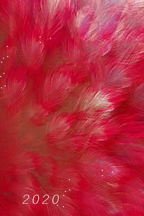 红色羽毛背景