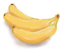手绘香蕉水果美食插画