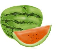 手绘西瓜水果美食插画