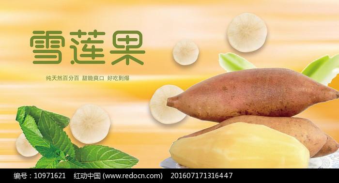 高端大气企业雪莲果宣传海报图片
