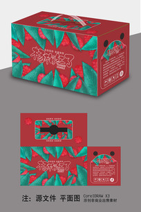 杨梅包装礼品盒