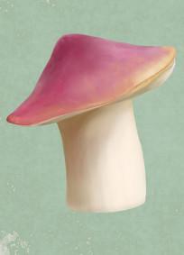 原创手绘插画蘑菇元素