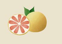 原创手绘插画元素水果柚子元素