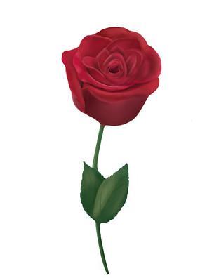 原创手绘厚涂插画情人节玫瑰花元素