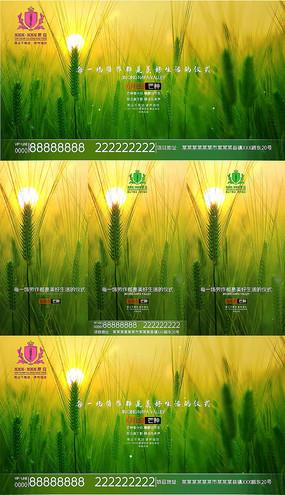 地产宣传二十节气芒种视频模板