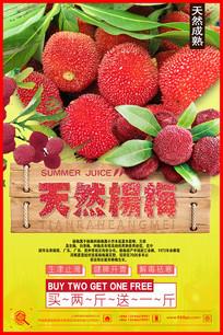 采摘杨梅成熟季节宣传海报
