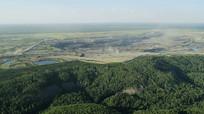 开阔大自然森林美景视频素材