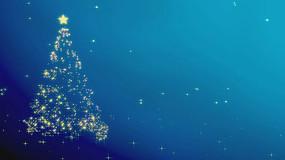 星光圣诞树背景视频素材