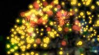 夜空燃放烟花节日庆祝视频素材