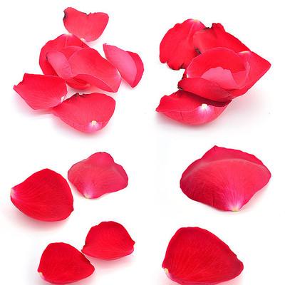 玫瑰花花瓣合并