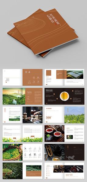 信阳红茶招商宣传画册设计