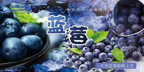 高端大气水果企业蓝色蓝莓宣传海报