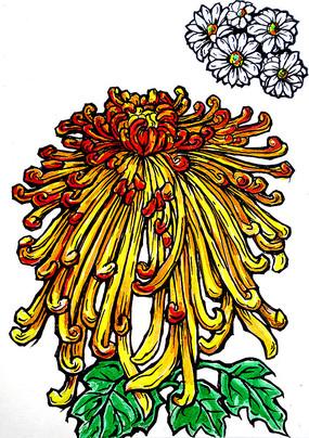 黄色菊花手绘