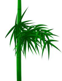 原创手绘绿色竹子