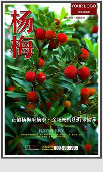 创意水果杨梅采摘促销海报