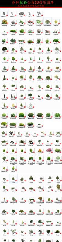 植物图块模型