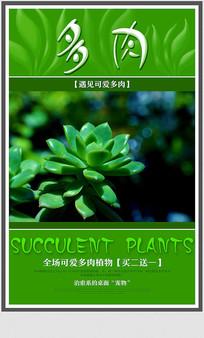 清新植物多肉促销海报