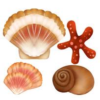 原创手绘贝壳海星贝类海螺