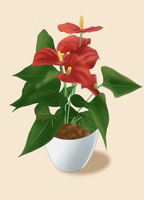 原创手绘插画植物绿植元素