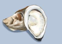 原创手绘插画海鲜生鲜生蚝美食食物元素