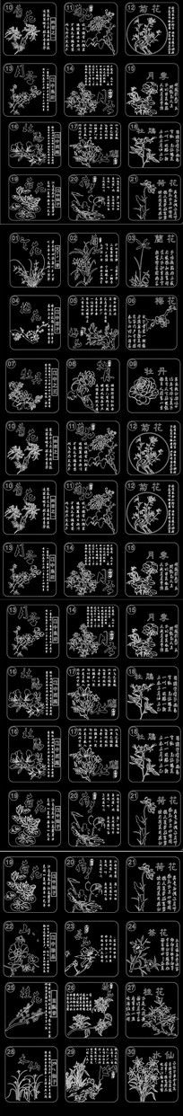 中国名花CAD图案 花纹