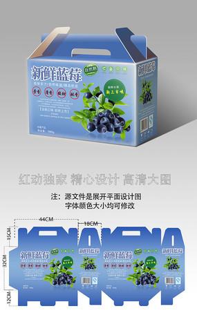 新鲜蓝莓水果包装设计