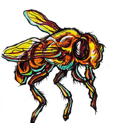 蜜蜂插画手绘稿