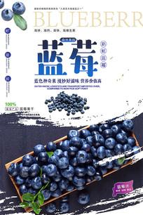 蓝莓广告海报