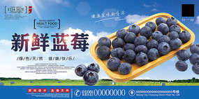 蓝莓水果海报