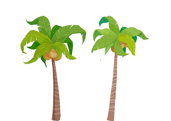 原创手绘植物两棵椰子树卡通插画