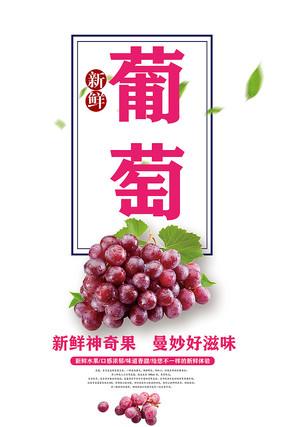 葡萄水果海报