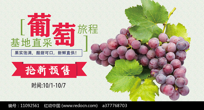葡萄水果海报图片
