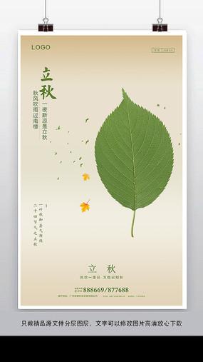 简约立秋节气海报