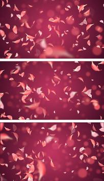 4K粉色花瓣飘扬萦绕通用气氛视频素材