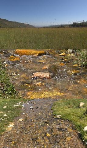 山间溪水草丛实拍视频素材