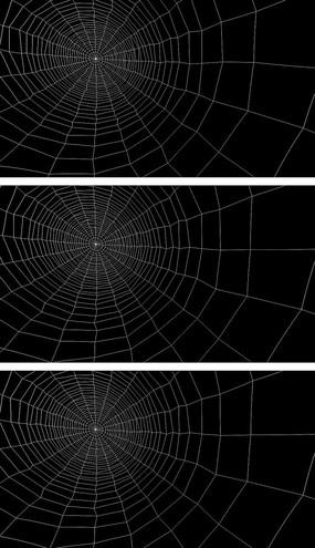 4K微动蜘蛛网惊悚前景通道元素视频素材