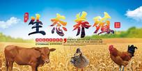 生态养殖海报