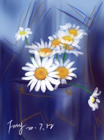 小雏菊手绘插画