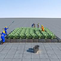 斑马万年青植物3D模型