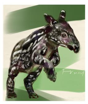 稀有动物貘插画