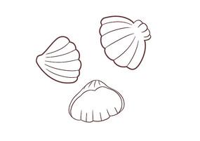 原创手绘小清新贝壳组合卡通装饰简笔画