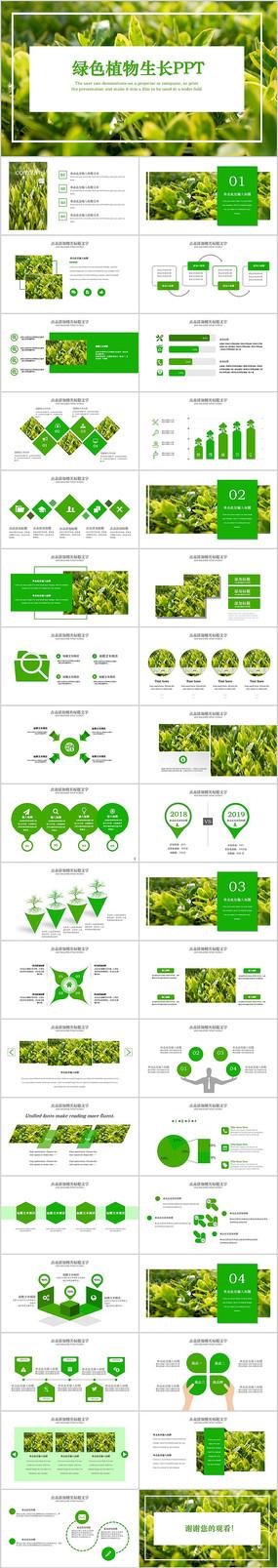 唯美绿色植物发芽植物生长敬畏生命PPT