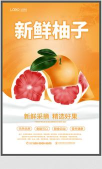 简约柚子宣传海报