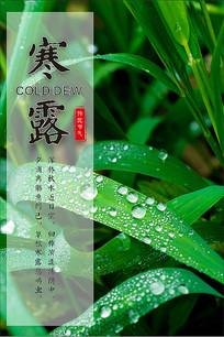 绿色寒露海报