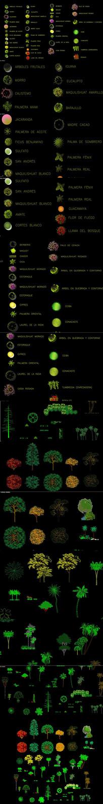 最新植物树木CAD图库